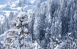 images/Fotos/Natur/Winter/thumbs//Winterlandschaft-DSC_5003.jpg
