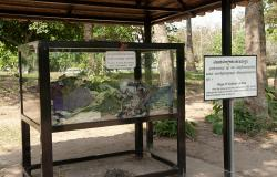 images/Fotos/Reisen/Kambodscha/thumbs//farbspektrum-killingfields-tode.jpg